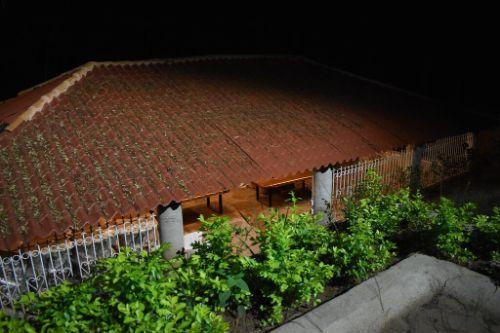 Cabana Cedro Mazamitla 15