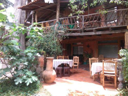 Cabana Los Ruisenores 8