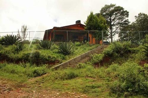Cabana Mateo 4