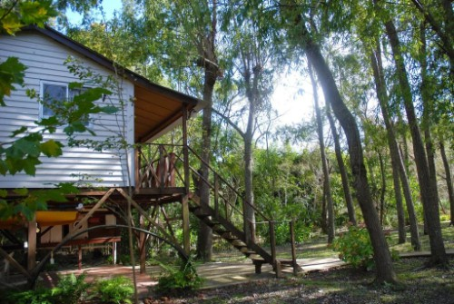 Cabana islena del bosque 14