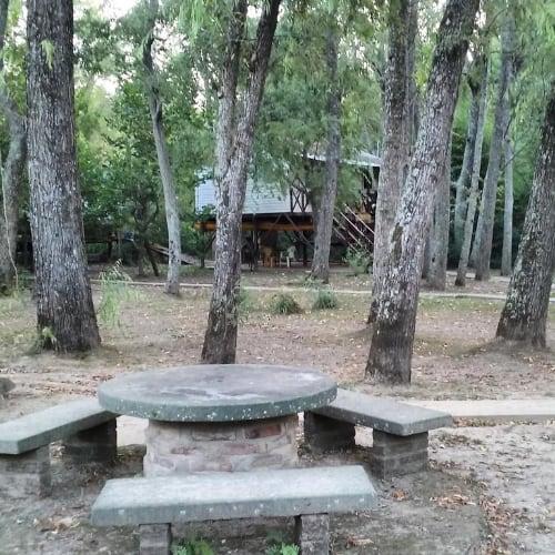 Cabana islena del bosque 26