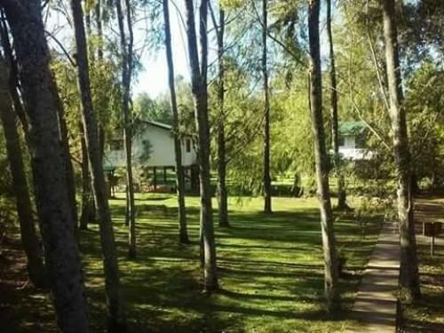 Cabana islena del bosque 34