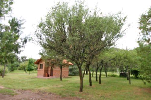 Cabanas Landhaus 21