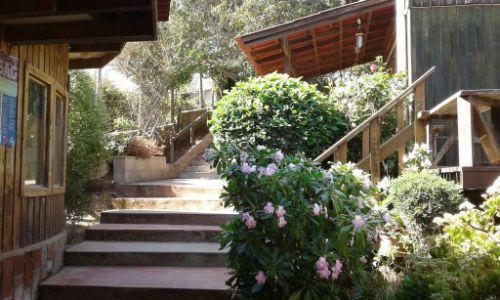 Cabanas Los Lobos 42
