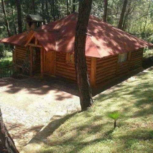 Cabanas en el Bosque 6