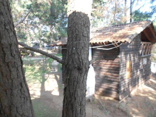 Cabanas los Venados 11