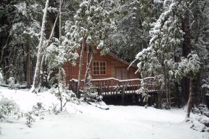 Cabana Rustica Patagonia Chilena