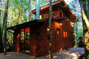 Cabanas Bosque Milenario