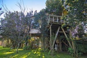 Casa Del Arbol De Chiloe